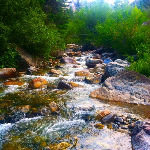 hiking the summer away--Journey for Jessi