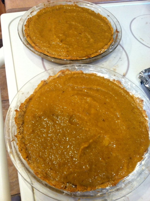 pumpkin protein pie--Journey for Jessi