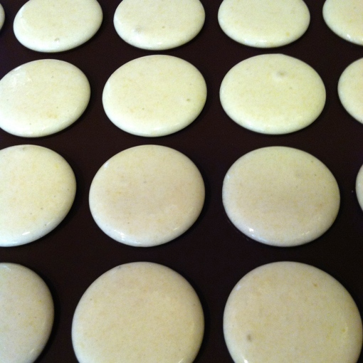 rum truffle macaróns--Journey for Jessi