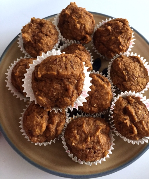 skinny mini pumpkin muffins || Journey for Jessi