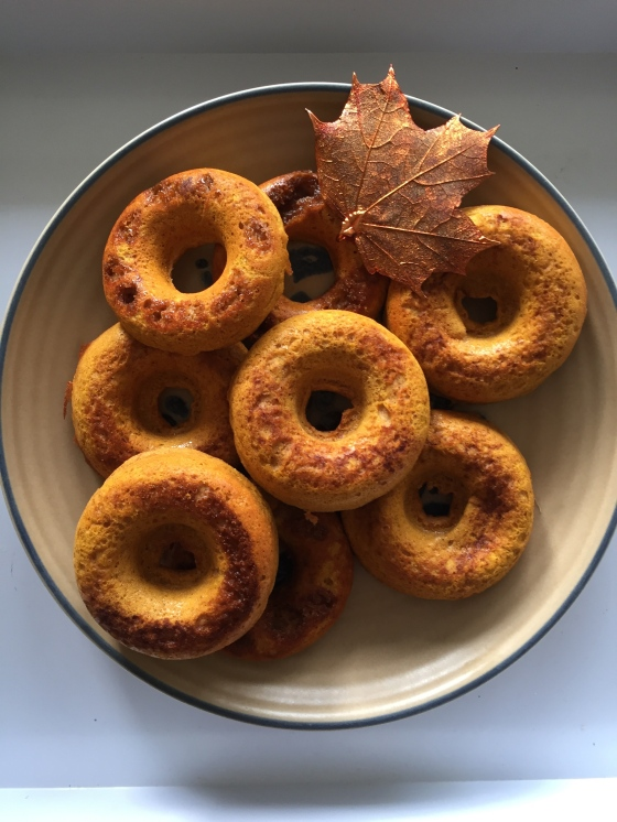 pumpkin protein donuts || Journey for Jessi